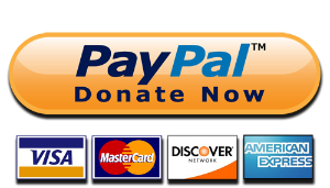 PayPal donation icon.