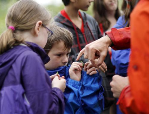 A photograph of children outdoors examining a plant in the hand.