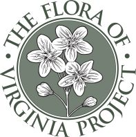 Logo of the Flora of Virginia Project