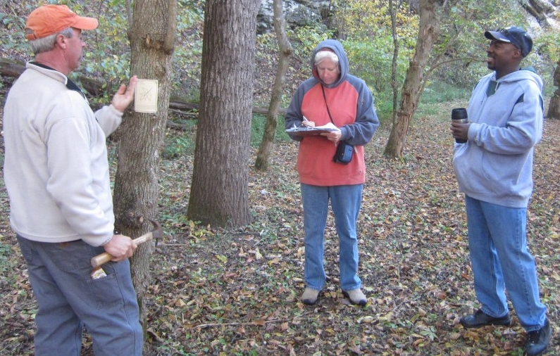 Photo of Master Naturalist students studying trees in the woods.