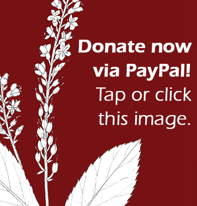 Donate via PayPal. Tap or click this image.
